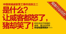 威客罢工宣言专题报道二