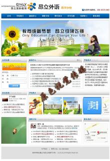 学校网站建设