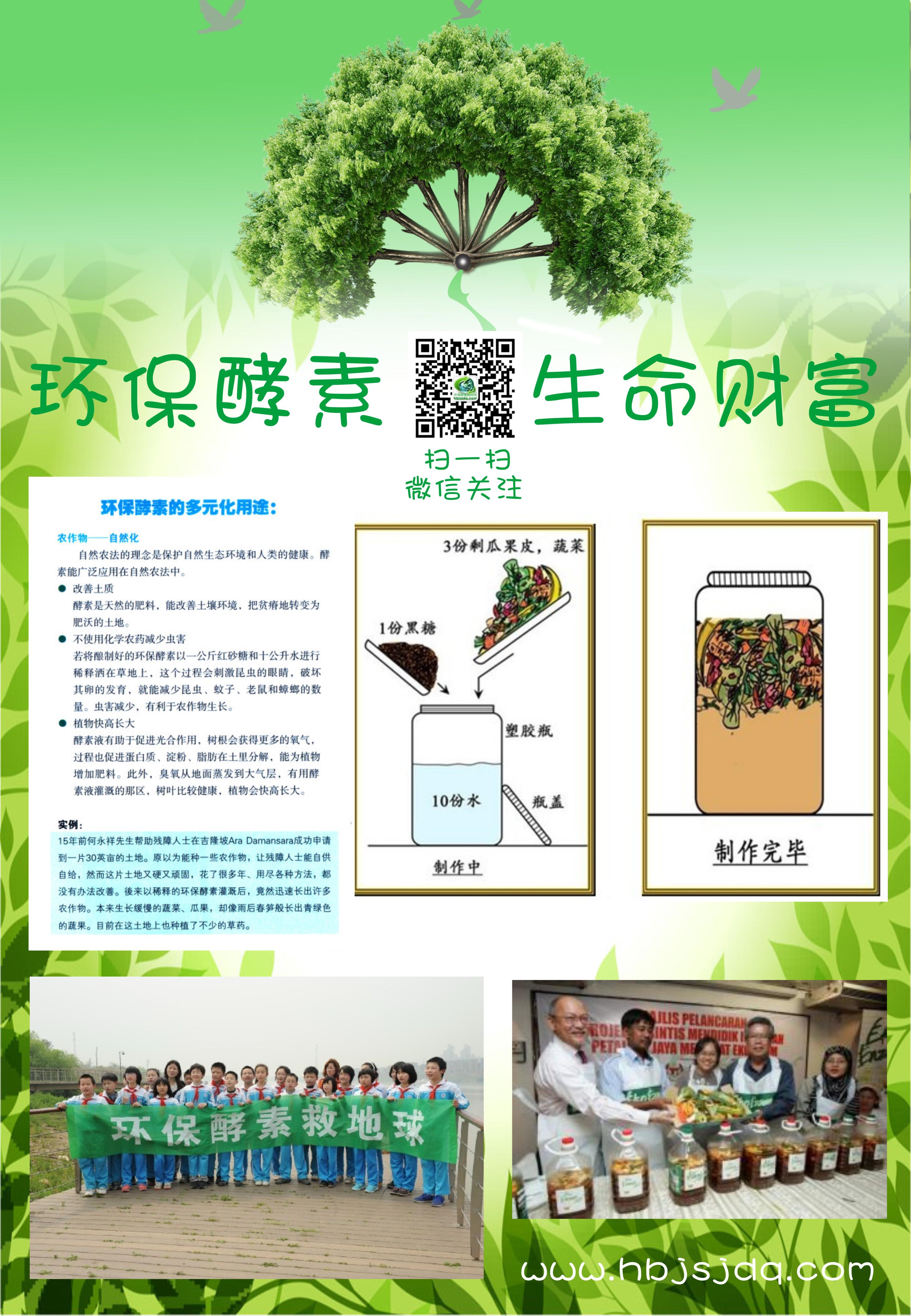 简单的环保公益网站广告牌设计