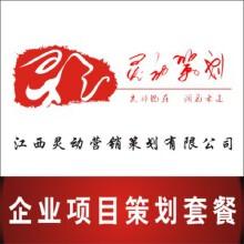威客服务:[41974] 企业项目策划