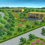 室外园林绿化