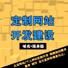 高端定制开发建设公司网站/个人站/官方网站