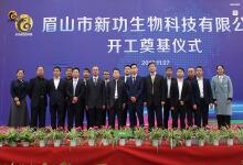 上海新功生物豪华型网站建设