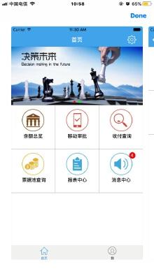 财务类App:金云
