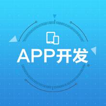 广州 专业app 原生定制开发