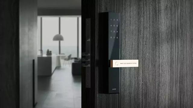 有钱人买房搞装修一个门把手都这么讲究