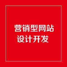 威客服务:[113386] 营销型网站开发/网站设计