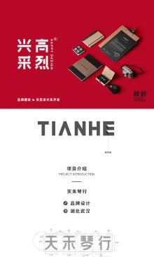 天禾琴行品牌设计