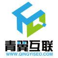 网站建设.商城建设.微信开发-青翼网络科技