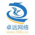 台州市卓远网络科技有限公司