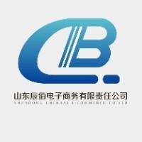 山东辰佰电子商务有限责任公司