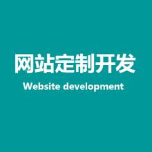 网站定制开发