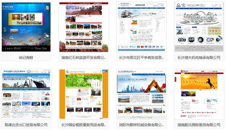 长沙本地网站建设案例2