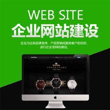 威客服务:[63575] 专业电子商务网站开发