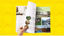包装设计、平面设计、平面广告设计、彩页设计、网页设计