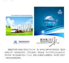 福建恒天然燃气有限公司公司官网