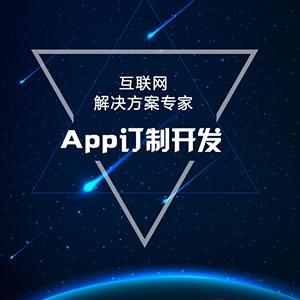 APP定制开发 双系统原生开发