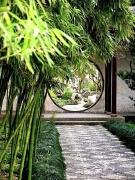 中国园林之洞门