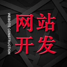 威客服务:[110597] 网站开发