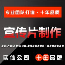 威客服务:[117068] 【宣传片制作】企业宣传片视频制作拍摄电商工业制造会议