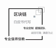 威客服务:[117393] 白皮书、商业计划书撰写