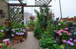 露台花园设计技巧