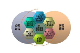 文件管理系统开发