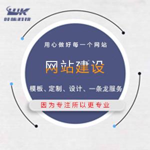 网站建设定制开发模板仿站 电商建站 网站建设微信小程序定制开发公众号运营