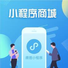 威客服务:[136251] 微信小程序定制开发 微信商城 多商户系统