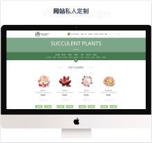 企业网站私人定制
