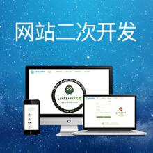 网站二次开发/企业网站建设/网站定制开发/网站建设