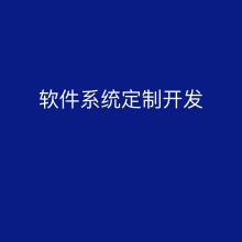 威客服务:[139964] 软件系统定制开发